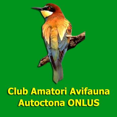 Calendario Mostre Ornitologiche 2019 Sicilia.Notizie Club Amatori Avifauna Autoctona Onlus